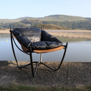 Black Feather Filled Suspend Chair